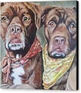 Bandana Dogs Canvas Print by Stephanie Dunn