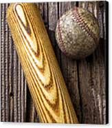 Baseball Bat And Ball Canvas Print by Garry Gay