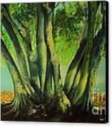 Bay Leaves Tree Canvas Print by Alessandra Andrisani