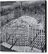 Beach Fence Bw Canvas Print by Susan Candelario