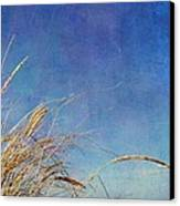 Beach Grass In The Wind Canvas Print by Michelle Calkins
