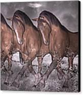 Beach Horse Trio Night March Canvas Print by Betsy C Knapp