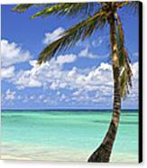 Beach Of A Tropical Island Canvas Print by Elena Elisseeva