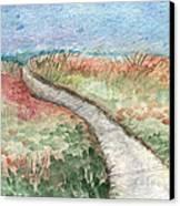 Beach Path Canvas Print by Linda Woods