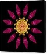 Beach Rose Iv Flower Mandala Canvas Print by David J Bookbinder