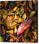 Beautiful Fall Color Canvas Print by Meirion Matthias