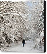 Beautiful Forest In Winter With Snow Covered Trees Canvas Print by Matthias Hauser
