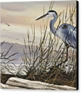 Beauty Along The Shore Canvas Print by James Williamson