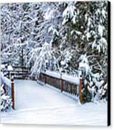 Beauty Of Winter Canvas Print by Kathy Jennings