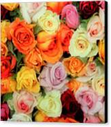 Bed Of Roses Canvas Print by Tony Grider
