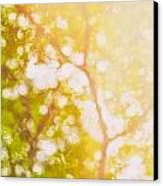 Beneath A Tree  14 5199   Diptych  Set 1 Of 2 Canvas Print by Ulrich Schade