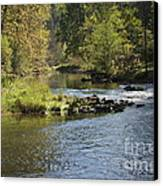 Big Trout Waiting Canvas Print by Mark Messenger
