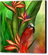 Birds Of Paradise Canvas Print by Carol Cavalaris