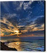 Birdy Bird At Hilton Beach Canvas Print by Ron Shoshani
