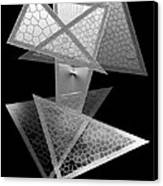 Black And White Triangles Canvas Print by Mario Perez