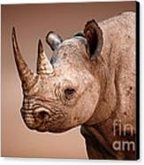 Black Rhinoceros Portrait Canvas Print by Johan Swanepoel