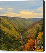 Blackwater Gorge With Fall Leaves Canvas Print by Dan Friend