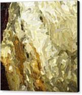 Blanchard Springs Caverns-arkansas Series 03 Canvas Print by David Allen Pierson