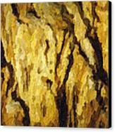 Blanchard Springs Caverns-arkansas Series 04 Canvas Print by David Allen Pierson