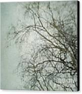 bleakly II Canvas Print by Priska Wettstein