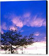 Blue And Purple Skies At Sunset Canvas Print by Elisabeth Ann