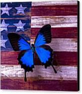 Blue Butterfly On American Flag Canvas Print by Garry Gay