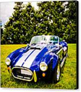 Blue Cobra Canvas Print by Phil 'motography' Clark