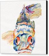 Blue Fish   Canvas Print by Pat Saunders-White