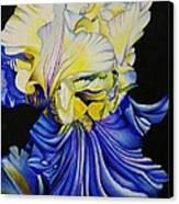 Blue Magic Canvas Print by Bruce Bley