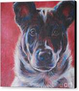 Blue Merle On Red Canvas Print by Kimberly Santini