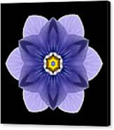 Blue Pansy I Flower Mandala Canvas Print by David J Bookbinder