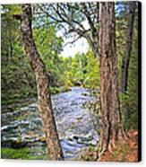 Blue Spring Branch 2 Canvas Print by Marty Koch