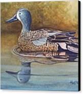 Blue Winged Teal Canvas Print by Rick Huotari