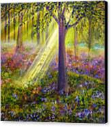 Bluebell Woods Canvas Print by Ann Marie Bone
