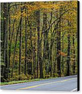 Blueridge Parkway Virginia Canvas Print by Todd Hostetter