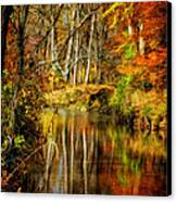 Bob's Creek Canvas Print by Lois Bryan