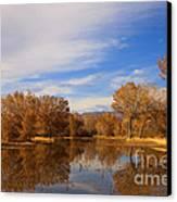 Bosque Del Apache Reflections Canvas Print by Mike  Dawson