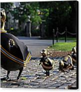 Boston Bruins Ducklings Canvas Print by Juergen Roth
