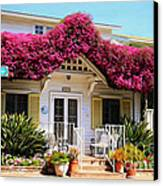 Bougainvillea House Canvas Print by Cheryl Young