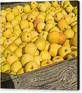 Box Of Golden Apples Canvas Print by Garry Gay