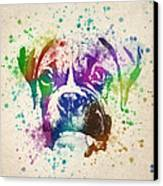 Boxer Splash Canvas Print by Aged Pixel