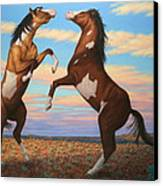 Boxing Horses Canvas Print by James W Johnson
