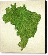 Brazil Grass Map Canvas Print by Aged Pixel