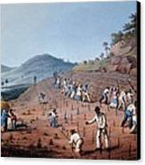 Breaking Up The Land, From Ten Views Canvas Print by William Clark