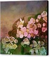 Bridal Memories Canvas Print by Shirley Sirois