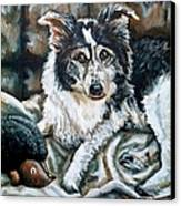 Brody Canvas Print by Shana Rowe Jackson