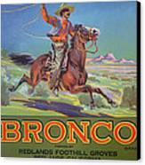 Bronco Oranges Canvas Print by American School