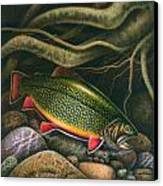 Brook Trout Lair Canvas Print by JQ Licensing