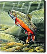 Brooky Hookup Canvas Print by Doug Heavlow