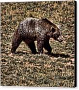 Brown Bears Canvas Print by Angel Jesus De la Fuente